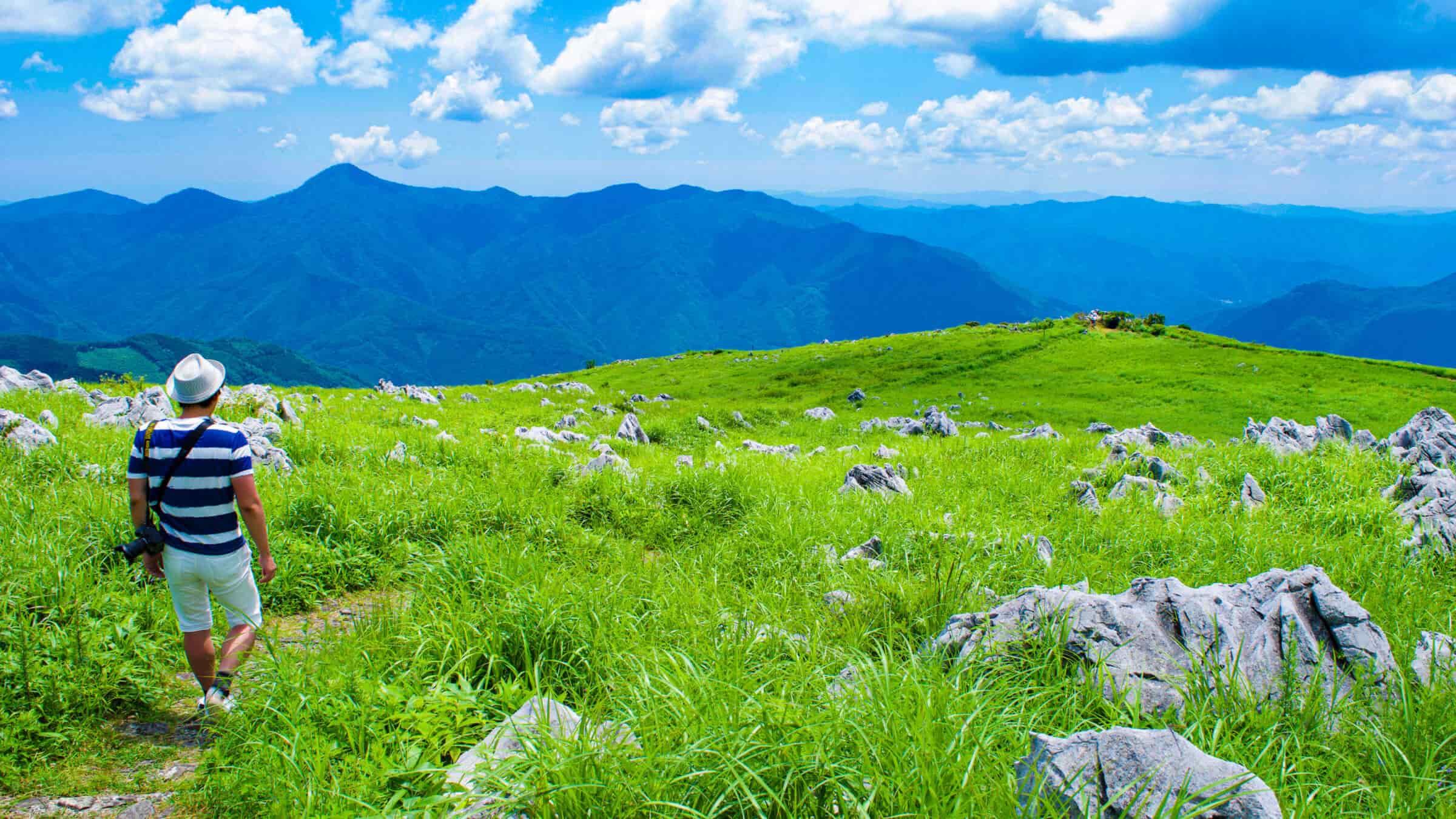 まるで北欧の高原。牧歌的な風景が広がる四国カルスト