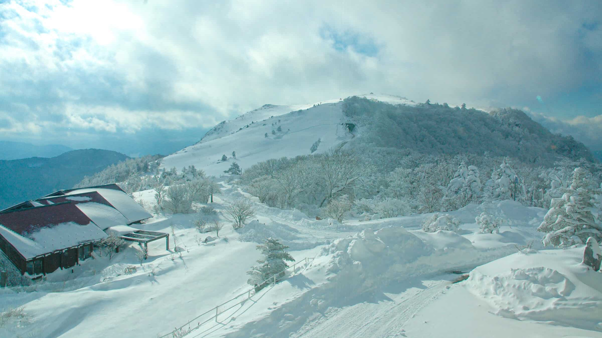 冬は一面の銀世界。南国高知で冬のレジャーを楽しめる。
