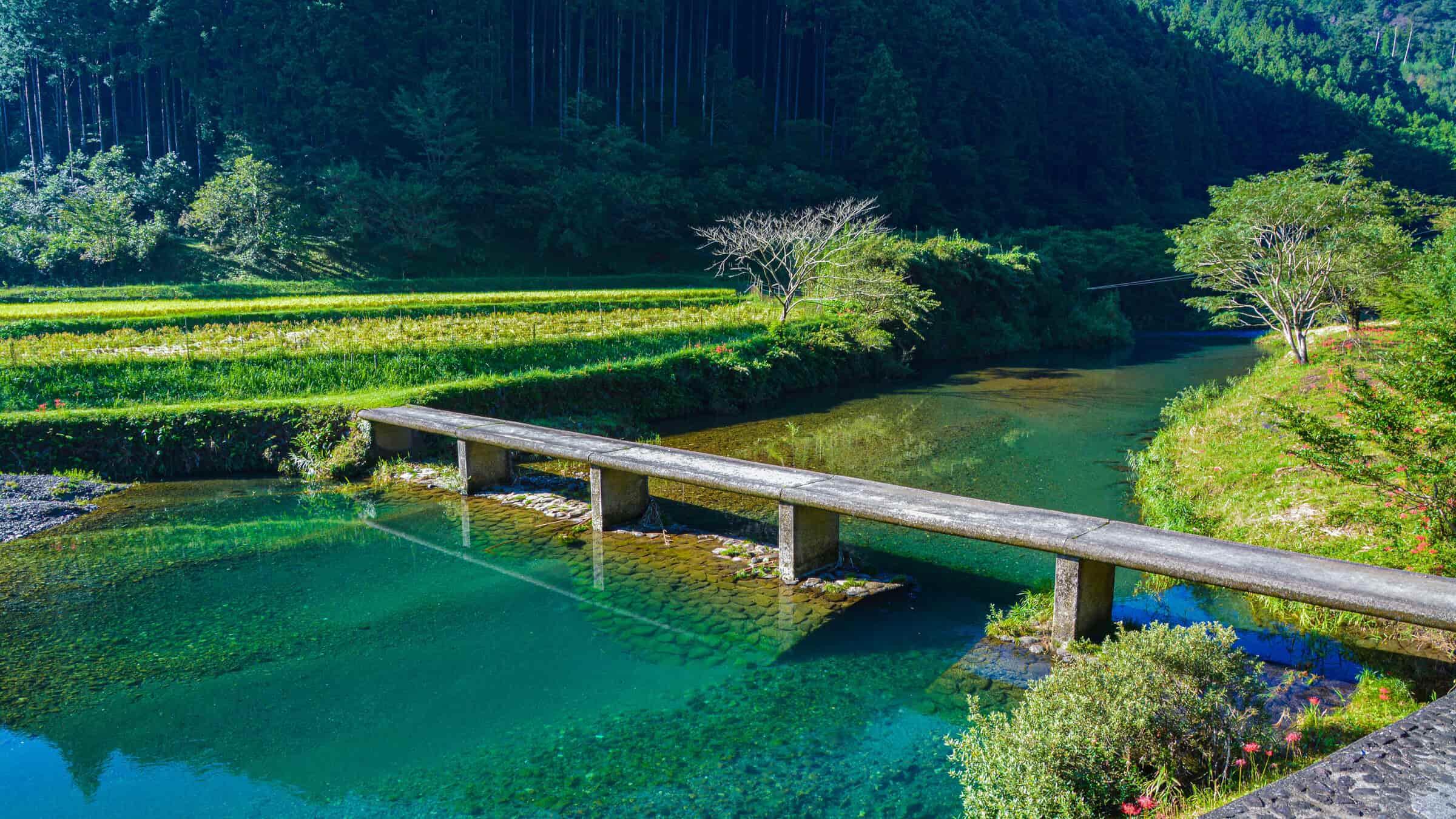 日本最後の清流、はじまりの場所[四万十川源流点]