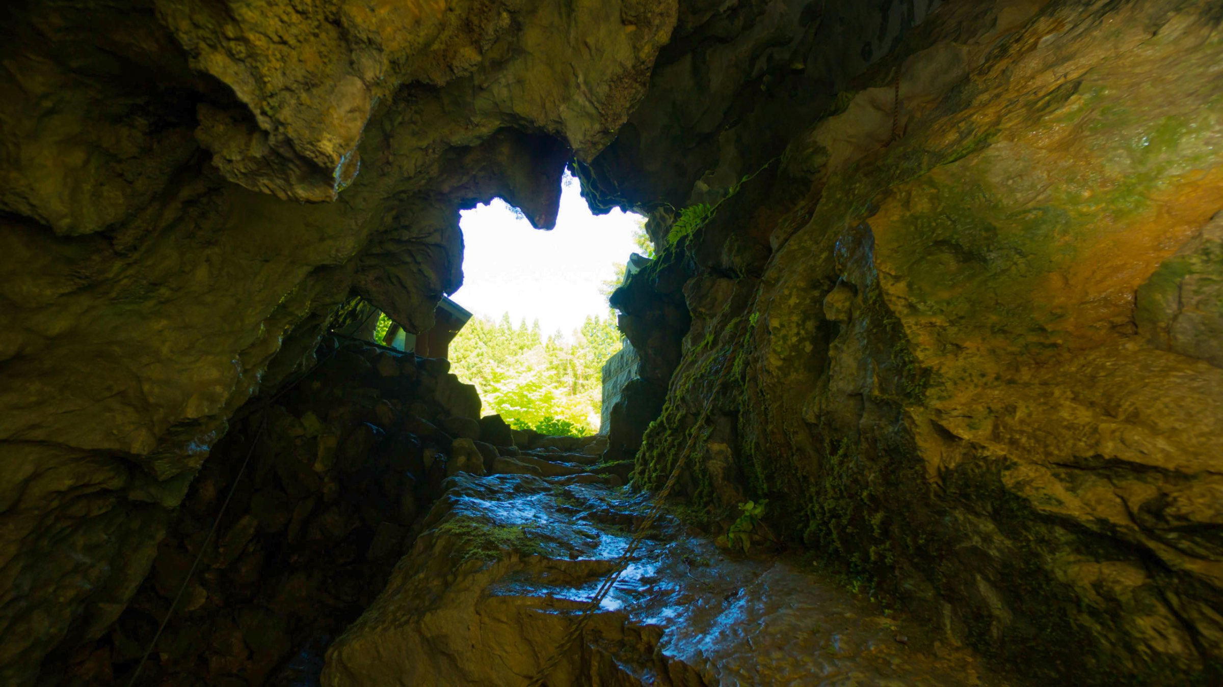 四万十川源流域に佇む神秘と冒険の洞窟「稲葉洞」