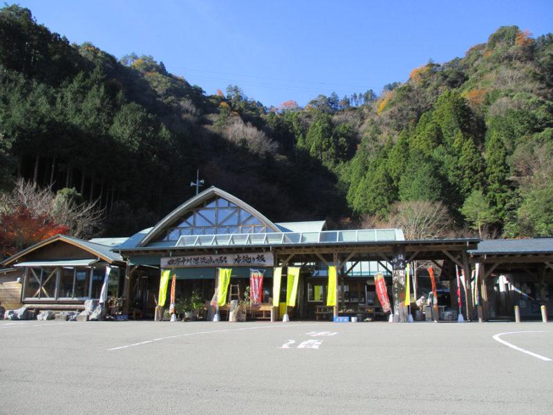 G.W後半は津野町の新茶をお楽しみください♪