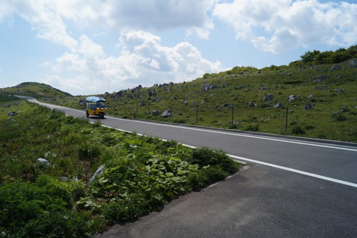 津野町のトゥクトゥクが天狗高原を走る