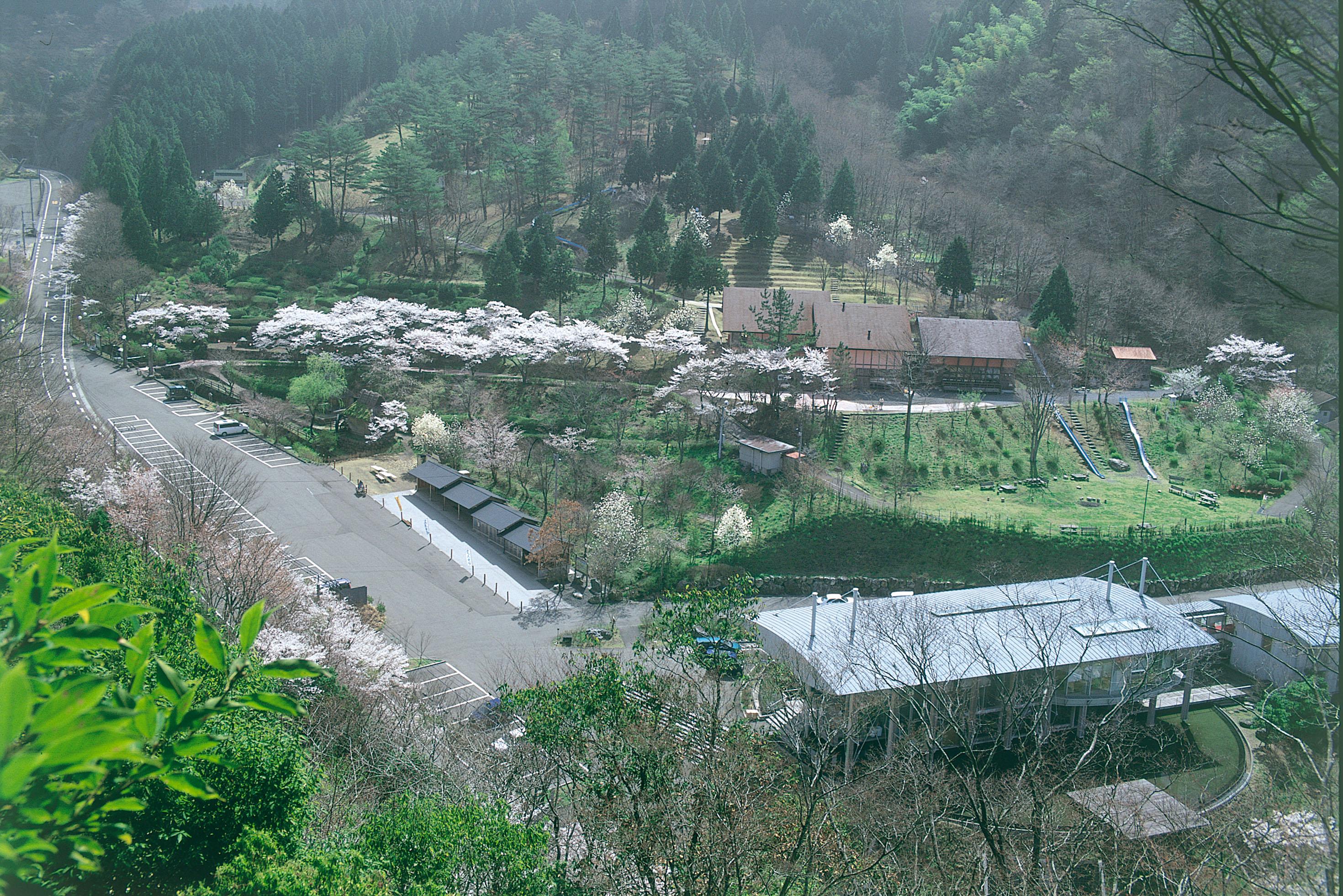 太郎川公園全景