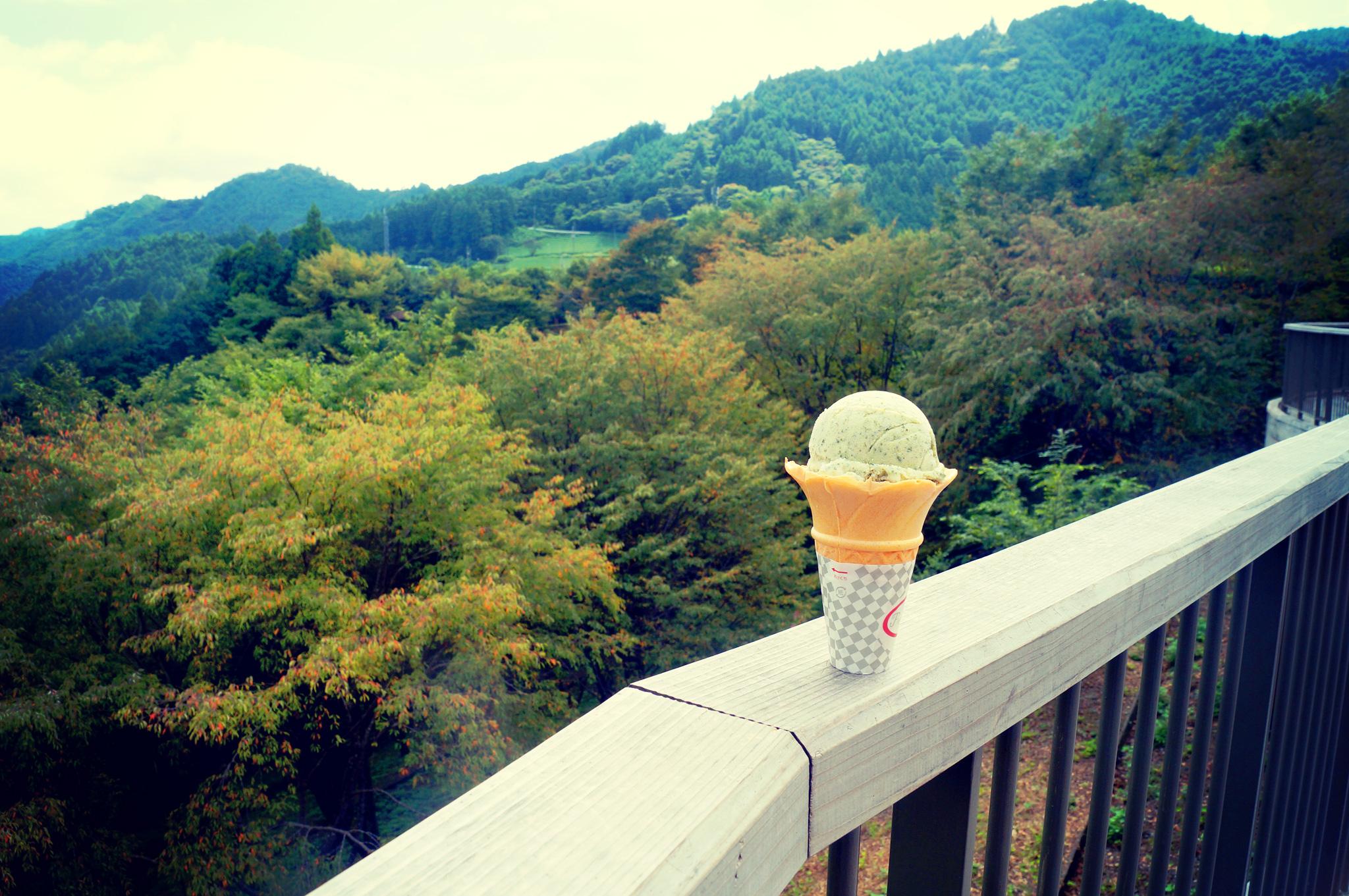 道の駅布施ヶ坂地元のアイスクリーム つの茶