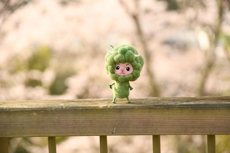 ちょうど今が見頃!かわうそ自然公園周辺の桜並木