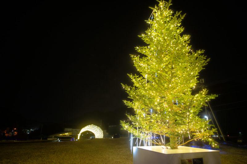 開催中のクリスマスイルミナイトの様子を動画でご紹介!