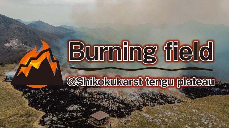 津野町の春の風物詩「山焼き」をドローンで撮影しました!