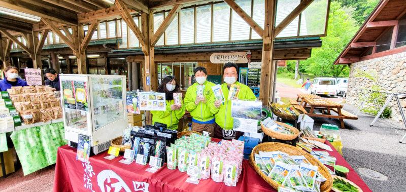 道の駅布施ヶ坂で新茶まつり開催中!